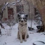 lilian winter 2008 056